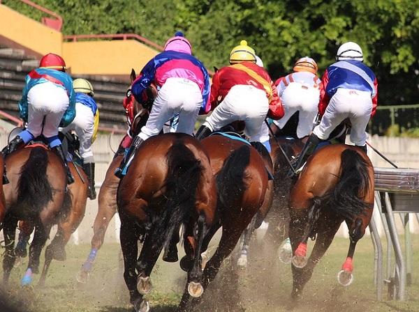 дохлые лошади в других организациях